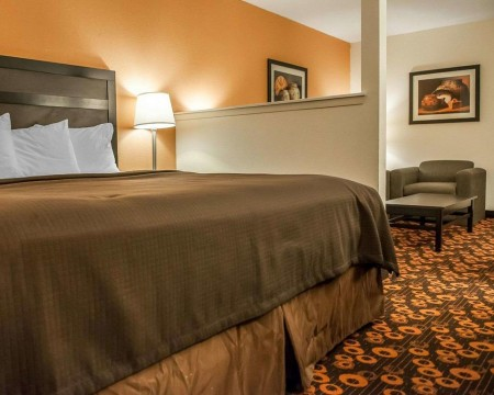 Welcome To Econo Lodge Inn & Suites New Mexico - King Suite